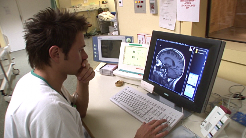 Experimentierfeld lebendes Gehirn