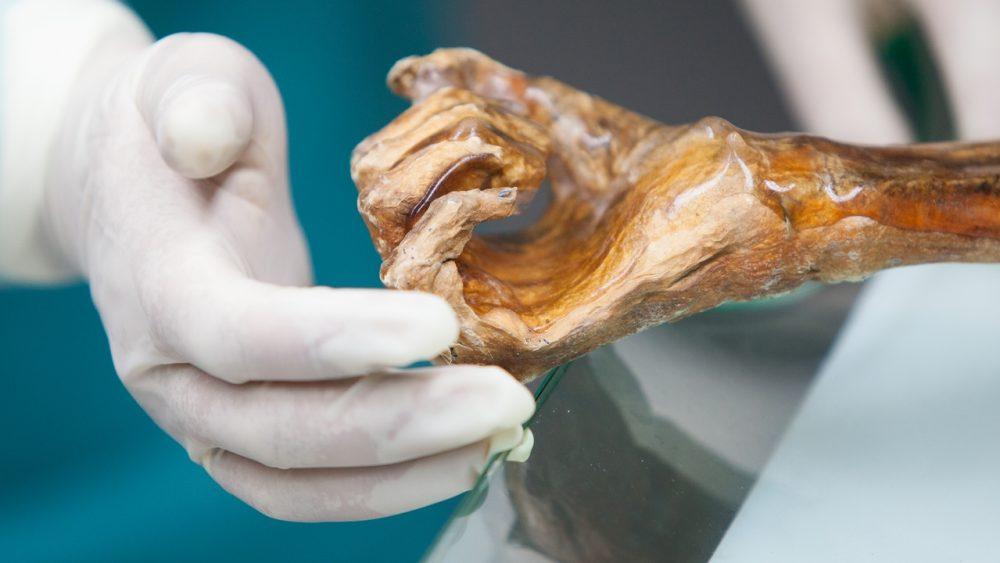 Was uns Mumien erzählen